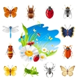 insect and summer nature icon set vector image vector image