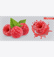 raspberry sweet fruit 3d realistic icon vector image vector image