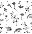 Seamless vintage pattern with herbs flowers vector image