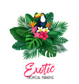 tropical banner with toucan vector image vector image