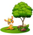 cartoon kangaroo under a tree on a white backgroun vector image