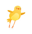cute baby chicken trying to fly funny cartoon vector image vector image
