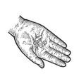 pills in hand sketch vector image
