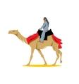 Cameleer Cartoon vector image
