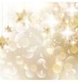 Elegant Christmas snowflakes and copyspace vector image