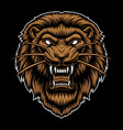 a colorful lion head vector image vector image