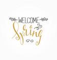 handwritten calligraphic spring lettering vector image vector image