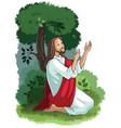 jesus agony in garden vector image vector image