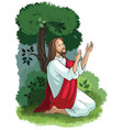 jesus agony in the garden vector image vector image