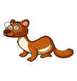 mongoose with dizzy face
