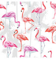 pink flamingo seamless pattern white background vector image