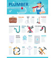 professional plumber service infographic template vector image