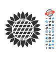 sunflower flower icon with free bonus vector image
