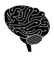 brain human isolated icon vector image vector image