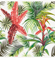 pink palm leaves bromelia light background vector image vector image