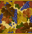 seamless pattern background blue wine grapes vector image