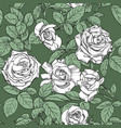 seamless pattern from white roses on green vector image vector image