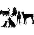 set of silhouettes of dogs vector image
