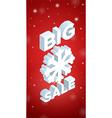 Winter Big Sale and big snowflake vector image vector image