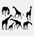 Giraffe animal silhouettes vector image vector image