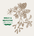 hand drawn christmas plants mistletoe and holly vector image