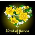 Heart from yellow daffodil stylish bouquet vector image vector image