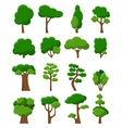 Set of sixteen trees vector image vector image