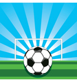 soccer ball on field vector image vector image