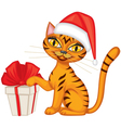 Tabby red cat gives a gift vector image