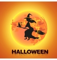 Witch flying over the moon vector image vector image