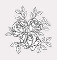 black and white rose flowers and leaves hand vector image vector image