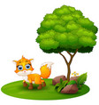 cartoon fox under a tree on a white background vector image vector image