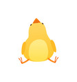 cute baby chicken sitting on the floor and looking vector image vector image