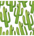 green cactuses cartoon seamless pattern vector image