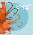 shrimps fresh seafood vector image vector image
