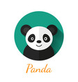 Panda portrait vector image