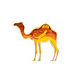 camel silhouette with sahara desert landscape vector image