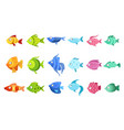 colorful fish set vector image vector image
