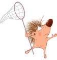 Cute Hedgehog Cartoon Character vector image