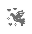 dove of peace love bird pigeon pacifism grey vector image vector image