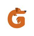 letter g is dog pet font dachshund alphabet vector image vector image