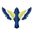 top view flying titmouse bird flat cartoon vector image vector image