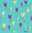 violet and yellow crocuses flowers seamless vector image vector image