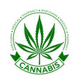 cannabis hemp leaf logo vector image