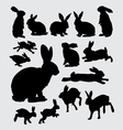 Cute rabbit pet action silhouettes