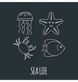 Diving icon with jellyfish fish crab and vector image vector image