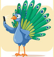 narcissistic peacock taking a selfie cartoo vector image vector image