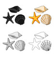 seashells from the bottom of the seasummer rest vector image
