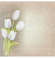 abstract floral grunge background with white vector image vector image