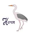 Bird heron vector image vector image